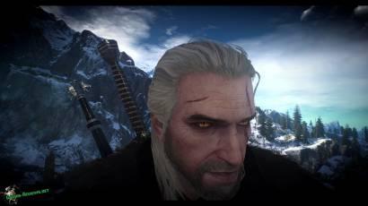 Глаза из Witcher 2