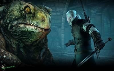 Ведьмак 3: как убить босса жабу?