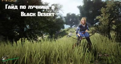 Гайд по лучнице в Black Desert