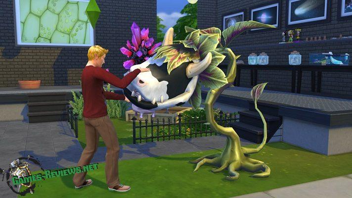 Sims 4: как вырастить жвачное растение